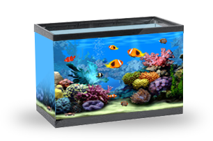 Морской-коралловый