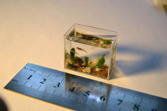 Как вычесть объем аквариума. Как рассчитать объем емкости различной формы