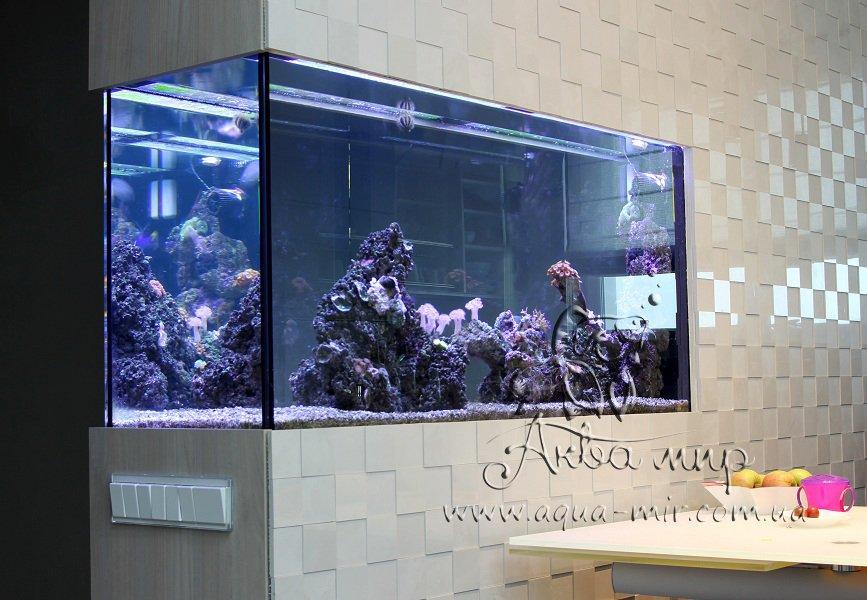 Морской аквариум «Коралловый риф» встроенный в стену